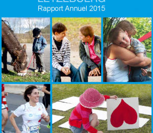 Rapport Annuel FLK 2015