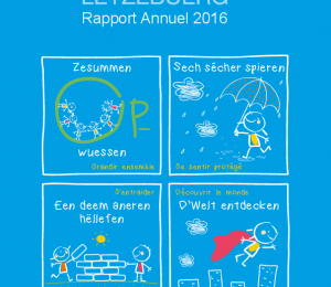 Rapport Annuel FLK 2016