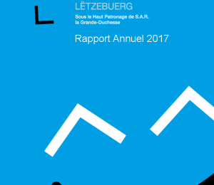 Rapport Annuel FLK 2017